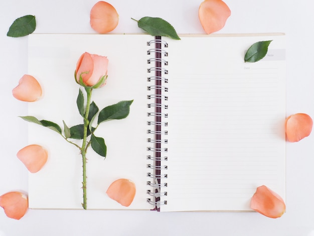Rose with green leaves on notepad