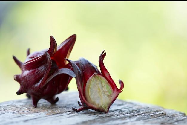 Плоды розеллы на размытой природе