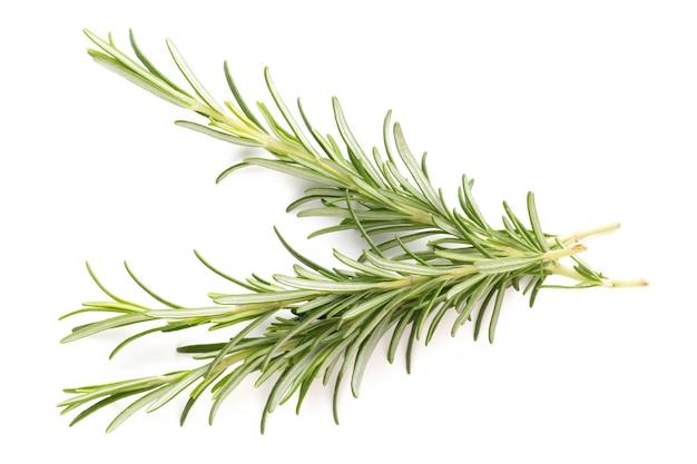 Rosemary bio herb on white.