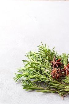 Rosemary in a bowl on a light background