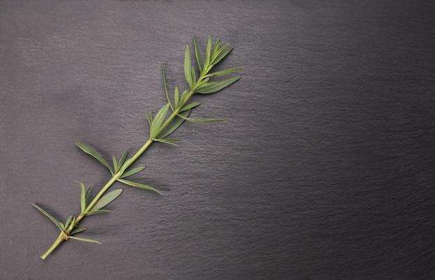 Трава розмарина на каменном столе.