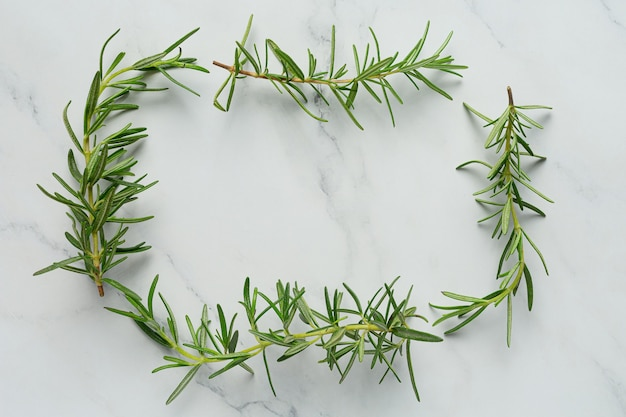Rosemary plants place on white marble floor