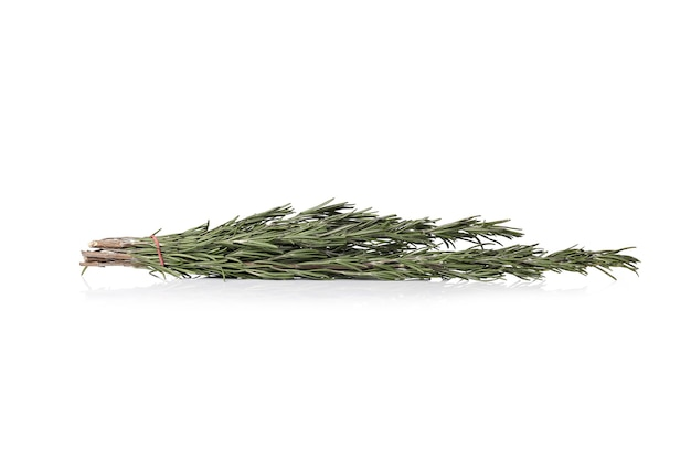 Rosemary on a white surface