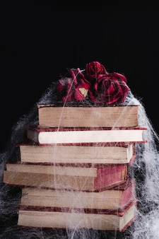 Roses and books with spider web