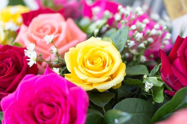 축 하 개념에 장미 꽃다발