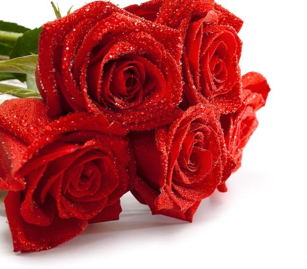 分離されたバラの花束