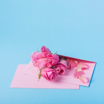 Roses buds with envelope on blue table