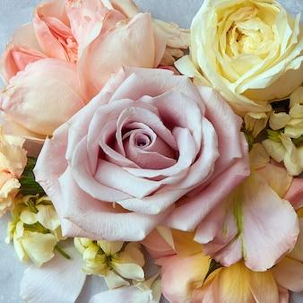 낭만적인 배경을 위해 빈티지 색상 스타일의 장미 꽃을 닫습니다.