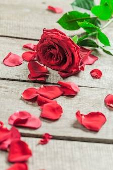 Roses and a hearts on wooden board, valentines day