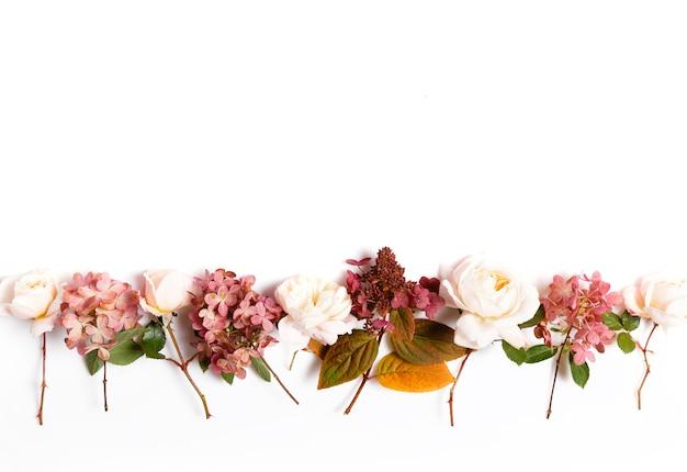 バラ、あじさい。白い背景の花の構成。