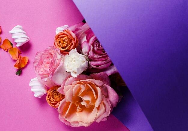 Розы, изолированные на фиолетовом градиенте
