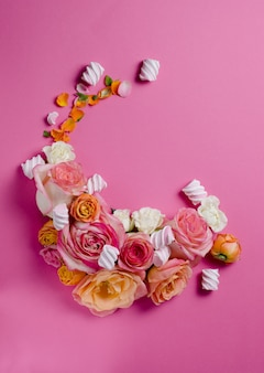 Roses isolated on pink