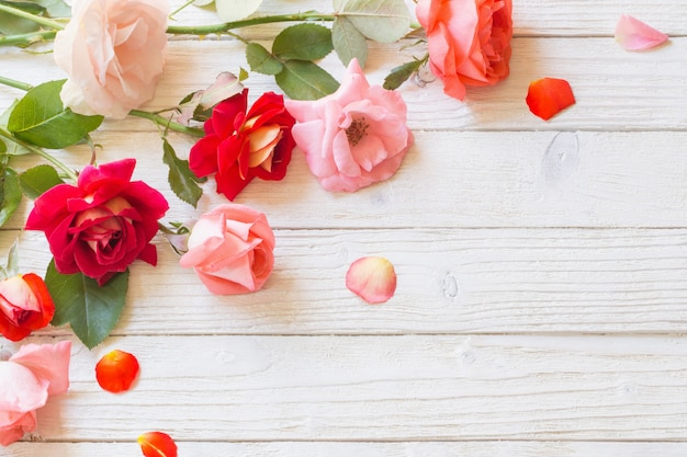 Розы на белой деревянной стене