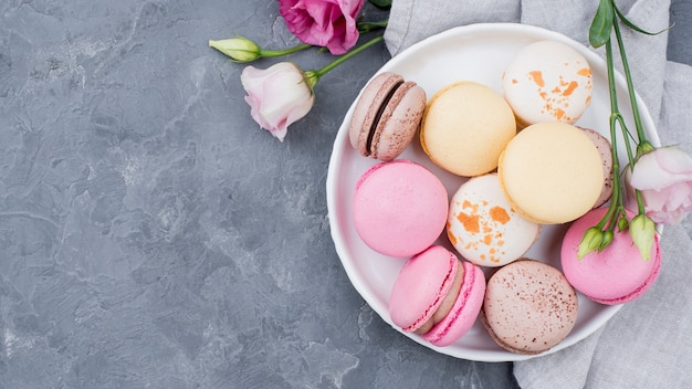 Roses with macarons on plate with copy space