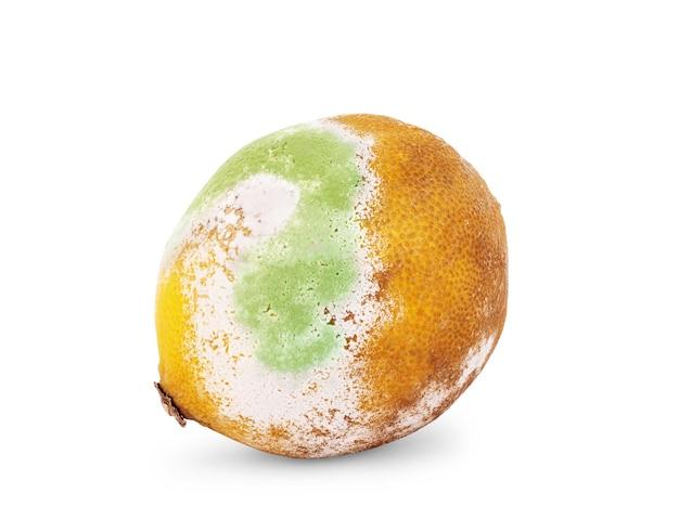 순수한 흰색에 고립 된 썩은 레몬 과일