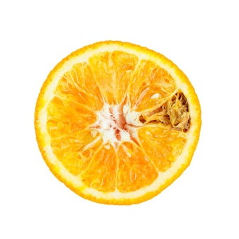 Rotten orange fruit on white
