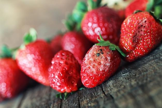 나무 배경에 썩은 딸기