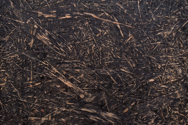 Rough wooden texture. abstract background. osb texture. chipboard material