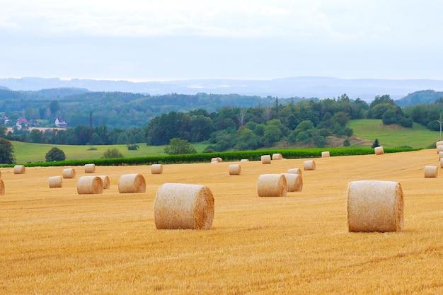青い曇り空を背景に農地にわら俵の丸い俵。小麦を収穫した後の刈り取られた畑。