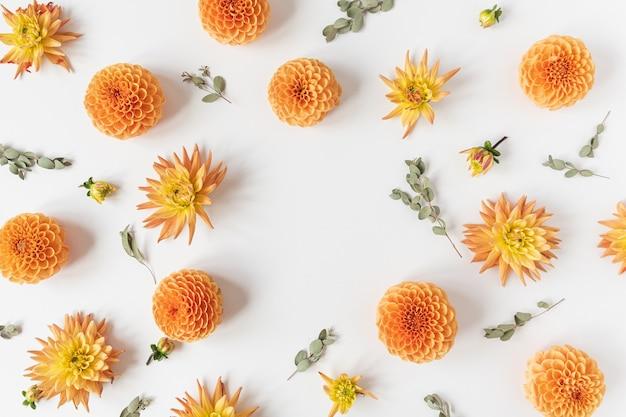 白い背景の上の美しいオレンジ色のダリアの花のつぼみとユーカリの枝で作られた丸い空白のコピースペースのモックアップフレーム