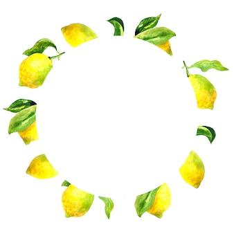 레몬과 잎을 가진 둥근 식물 프레임. 수채화 손으로 그린 그림입니다.