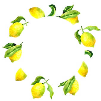 レモンと葉の丸い植物フレーム。水彩手描きイラスト。