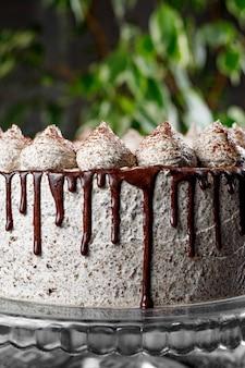 Round creamy cake with chocolate and cinnamon.
