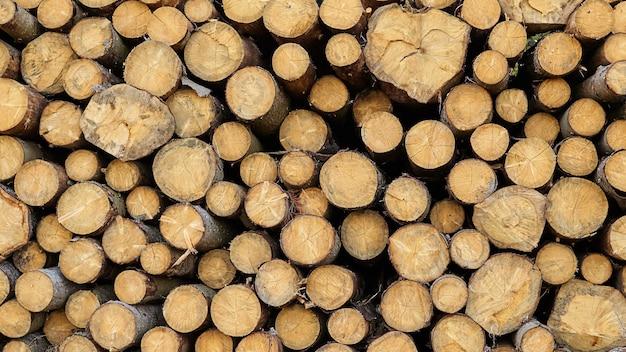 Круглые деревянные бревна фон