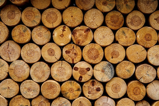 丸い薪の質感。積み重ねられた木の丸太の背景の壁
