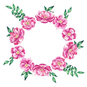 ピンクの美しい花と丸い花のフレーム。水彩手描きイラスト。孤立。