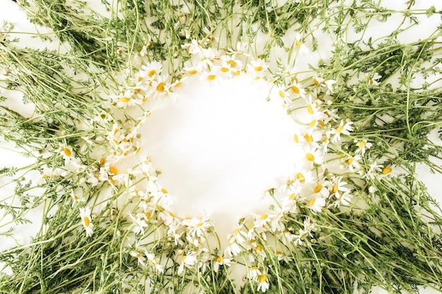 흰색 표면에 카모마일 데이지 꽃으로 만든 둥근 프레임 테두리