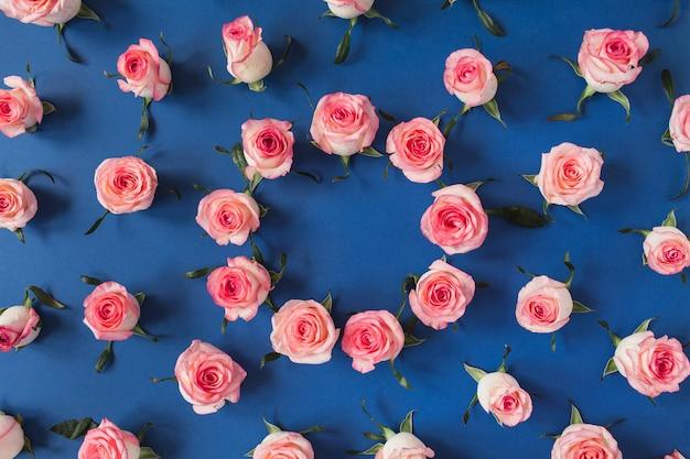 青い表面のピンクのバラの花のつぼみの丸いフレームの境界線