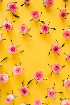 黄色の表面にピンクのバラの花のつぼみの丸いフレームの境界線