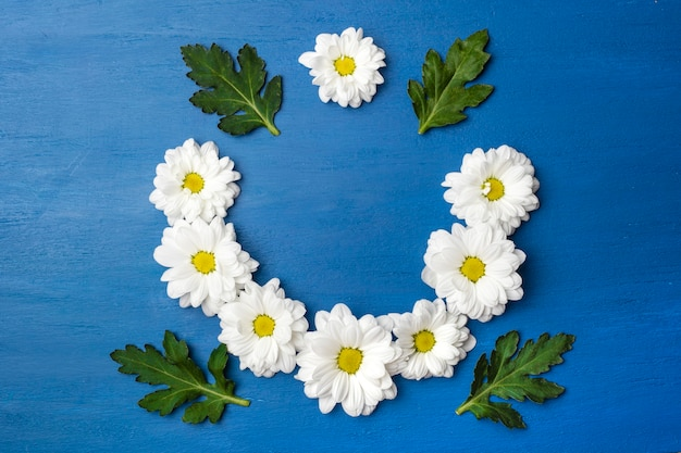 Round frame of flowers on a blue background. magnificent white chrysanthemums with copy space