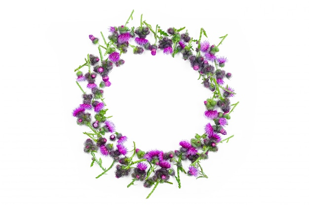 Round frame made of green branches of thistle with thorns