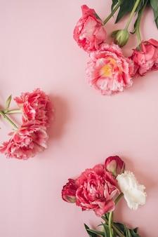 분홍색에 아름다운 분홍색과 흰색 모란 튤립 꽃으로 만든 둥근 프레임