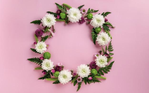 ピンクの背景に分離された色とりどりの花菊で作られた丸いフレーム。花の構成。菊の花の夏の花輪。フラットレイ。