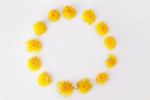 タンポポの花で作られた丸いフレーム。夏のコンセプト、上面図、フラットレイ。
