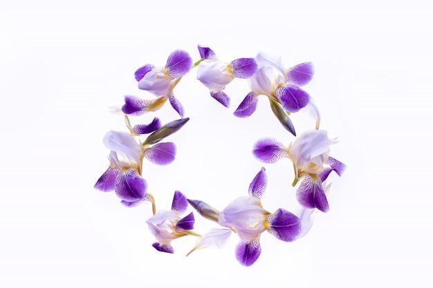 白地に紫のアイリスの花で作られた円形フレーム。フラット横たわっていた、トップビュー。