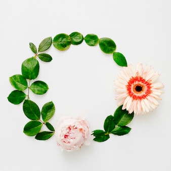 Round frame made of peony and gerbera flowers with green leaves