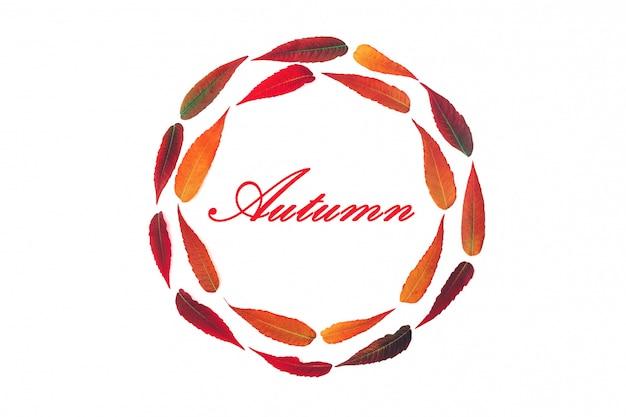 明るい秋のラウンドフレームの葉の碑文と白い背景で隔離の葉秋トップビューフラットレイアウト