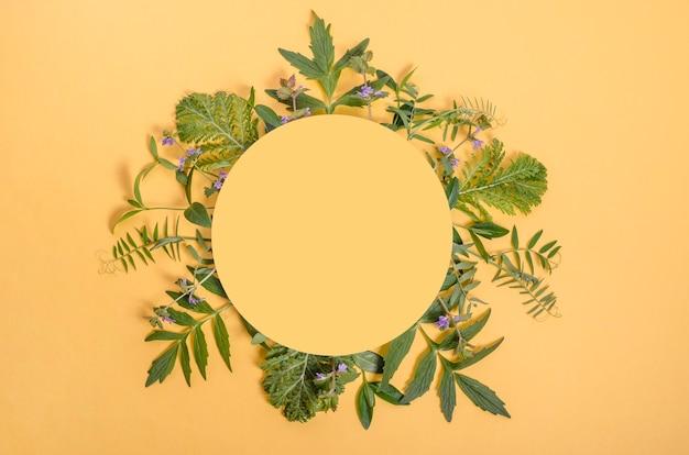 Круглая рамка из зеленых листьев растений на желтом