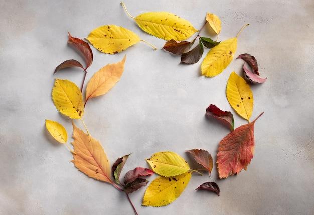Круглая рамка из листьев разных цветов