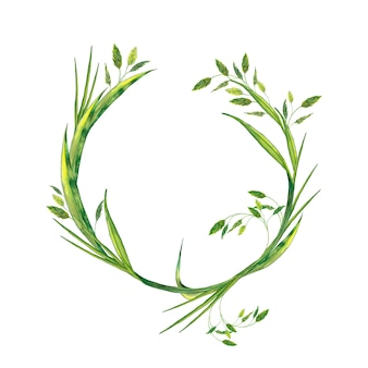Round frame of realistic summer fresh green grass with spikelets. watercolor painting.