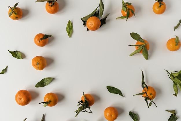 生オレンジ、白地に緑の葉模様のマンダリンフルーツで作られたコピースペースの丸いフレーム