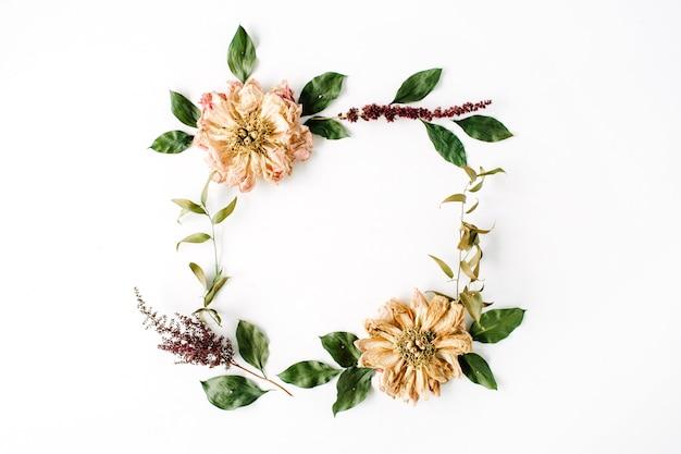 白で隔離されるベージュの乾燥した牡丹の花、枝、葉とラウンドフレームの花輪パターン