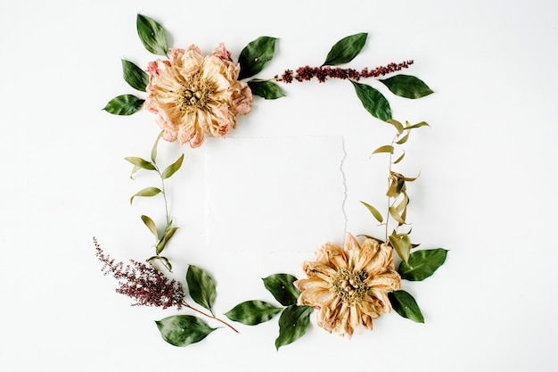 Round frame wreath pattern with beige dried peonies flowers, branches, leaves and paper blank isolated on white