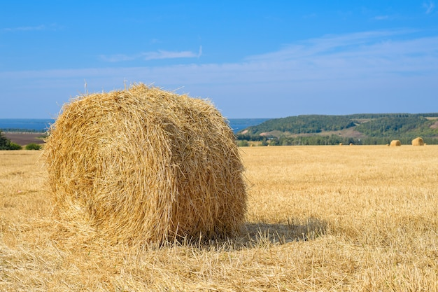 Round haystack in the field after haymaking, copy space, agricultural industry concept