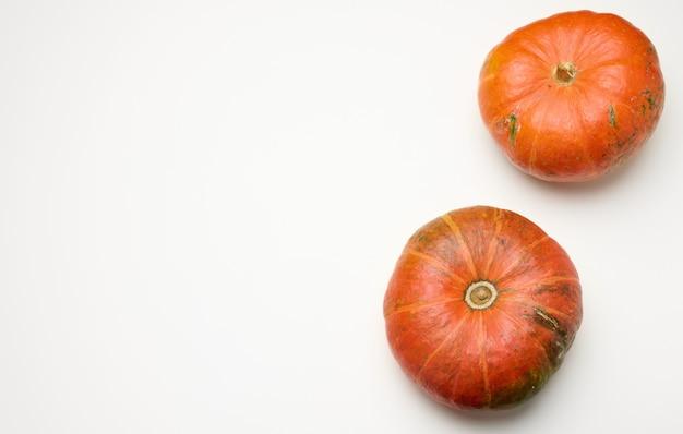 Round ripe orange pumpkins on white background, top view, copy space