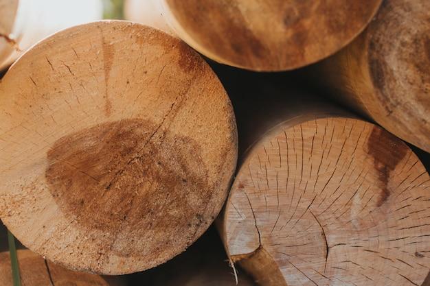 Round saw cuts logs. round logs